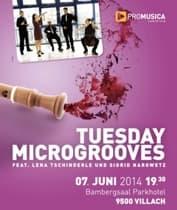 villach-microgrooves-1